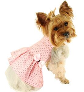 Одежда для собак французский бульдог интернет магазин дешево